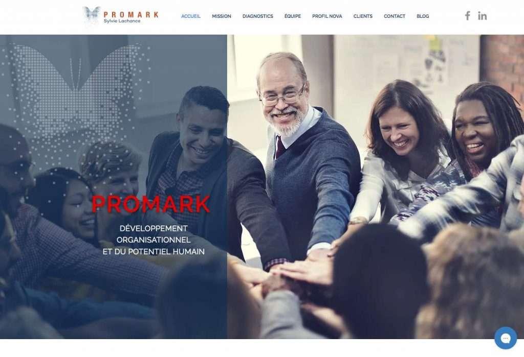 conception site web - PROMARK